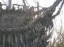 2006 Port Lucaya